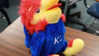 News: Seven seniors named as Kansas Honor Scholars